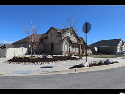 Herriman Single Family Home For Sale: 12469 S Patriot Hill Way