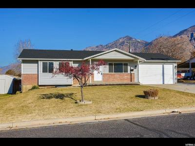 Brigham City Single Family Home For Sale: 224 W 400 N