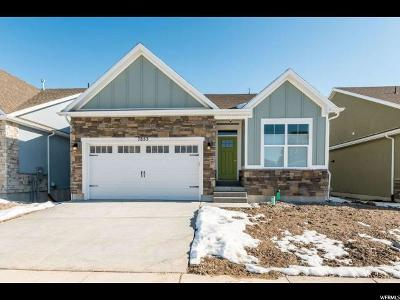 West Jordan Single Family Home For Sale: 7853 S Dornie Ln W #2