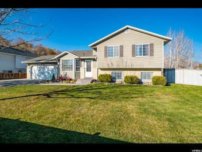 Provo Single Family Home For Sale: 866 W 2370 N