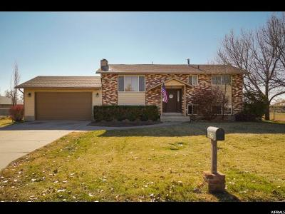 Hooper UT Single Family Home For Sale: $275,000