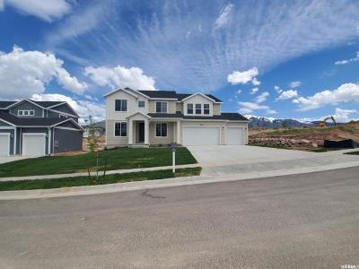Layton Single Family Home For Sale: 3196 N 1450 E #229