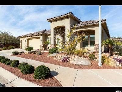St. George Single Family Home For Sale: 2178 W Horizon View Dr