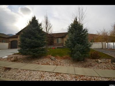 Single Family Home For Sale: 442 E Skyline Dr S