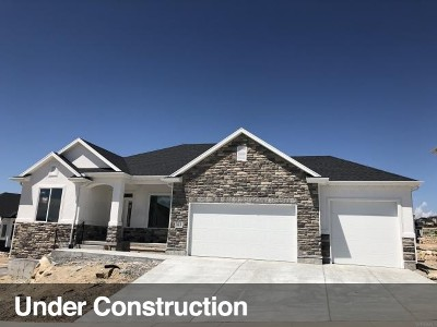 Lehi Single Family Home For Sale: 3845 N Spring Brook Ln #307