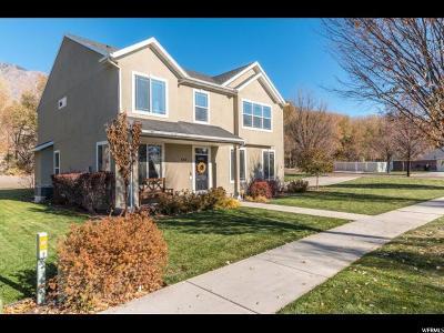 Springville Single Family Home For Sale: 552 W Devon Glen Dr