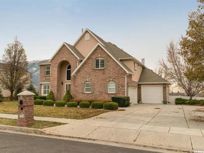 Weber County Single Family Home For Sale: 829 E 3300 N