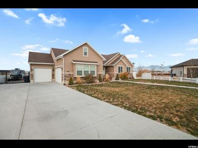 Grantsville Single Family Home For Sale: 799 Saddle Horn Rd