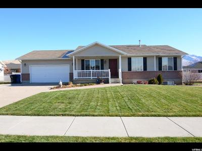 Single Family Home For Sale: 698 S 180 E