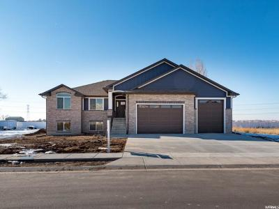 Weber County Single Family Home For Sale: 3237 S Straight W