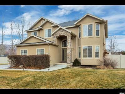 Wasatch County Single Family Home For Sale: 272 N 1300 E