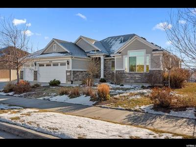 Riverton Single Family Home For Sale: 3749 W Arches Park Rd