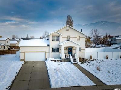 Tooele Single Family Home For Sale: 748 N 310 E