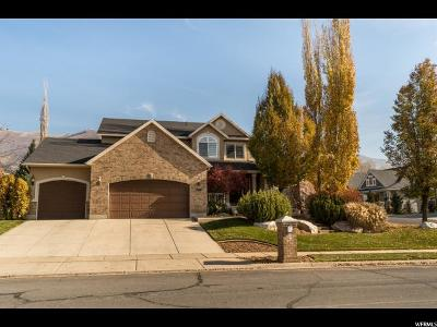 Davis County Single Family Home For Sale: 569 S 875 E