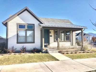 South Jordan Single Family Home For Sale: 10517 S Split Rock Dr W