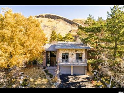 Salt Lake City Single Family Home For Sale: 1571 E Tomahawk Dr