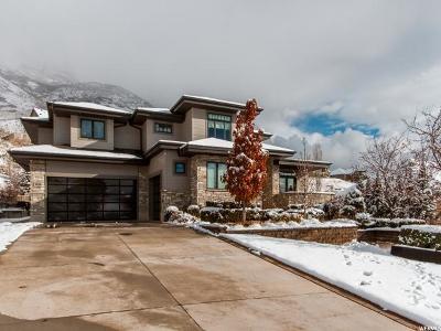 Cedar Hills Single Family Home For Sale: 9606 N Aztec Dr