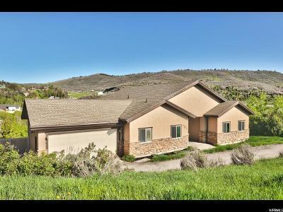 Park City Single Family Home For Sale: 7871 N Douglas Dr