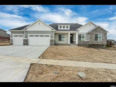 American Fork Single Family Home For Sale: 764 N 780 W #107
