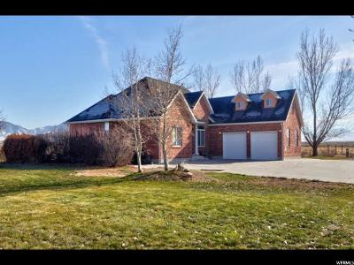 Single Family Home For Sale: 3570 N Sun Valley Dr