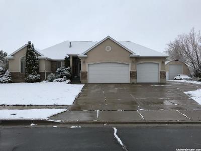 Davis County Single Family Home For Sale: 7341 S 2050 E