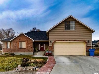 Lehi Single Family Home For Sale: 970 N Cedar Hollow Blvd