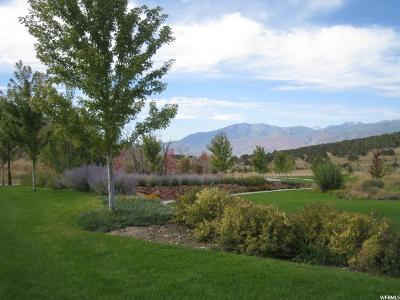 Wasatch County Residential Lots & Land For Sale: 3300 E Lindsay Spring Cir S