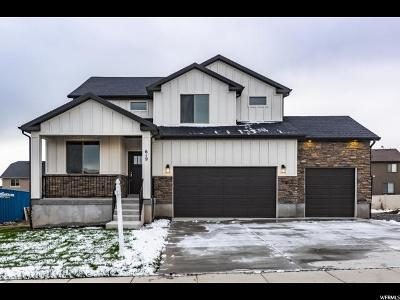 Utah County Single Family Home For Sale: 619 W Sage Ln #1600