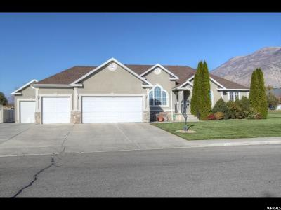 Pleasant Grove Single Family Home For Sale: 1264 W 1500 N