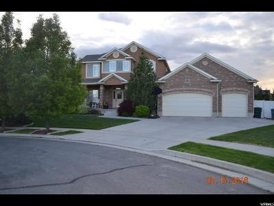 South Jordan Single Family Home For Sale: 10002 S Chip Cir