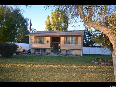 Wasatch County Single Family Home For Sale: 339 E 400 S