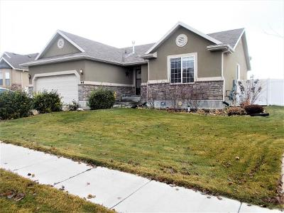 Stansbury Park Single Family Home For Sale: 448 Lourdes