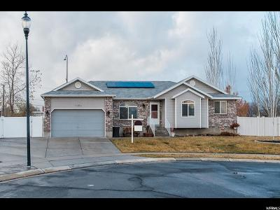 West Jordan Single Family Home For Sale: 1686 W Peach Creek Ct S