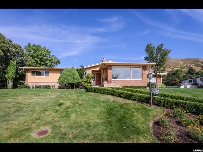 Salt Lake City Single Family Home For Sale: 1171 S Jaren Cir