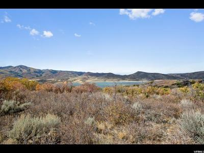 Wasatch County Residential Lots & Land For Sale: 1090 E Longview Dr