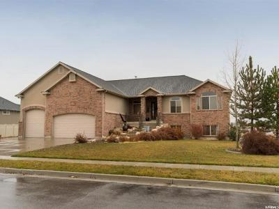 Weber County Single Family Home For Sale: 2334 N 2575 W