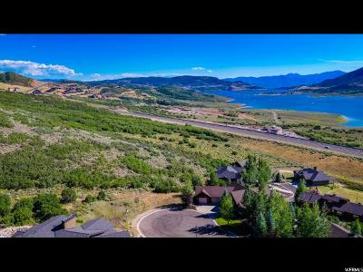 Wasatch County Residential Lots & Land For Sale: 10268 N Sage Hollow Cir