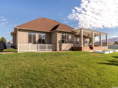Davis County Single Family Home For Sale: 3461 W 850 N