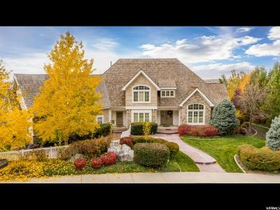Provo Single Family Home For Sale: 943 N Terrace Dr