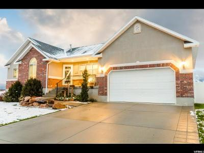 Nibley Single Family Home For Sale: 2338 S Spring Hollow Cir W