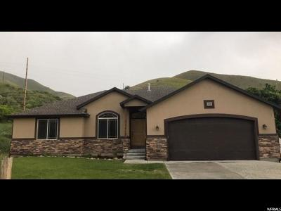 Tooele County Single Family Home For Sale: 49 W Iron Rod Rd S