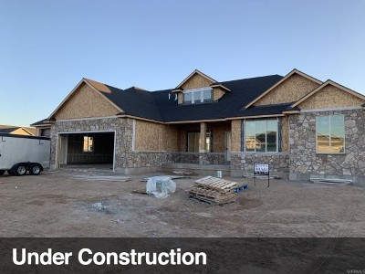 Weber County Single Family Home For Sale: 4911 W 3500 S