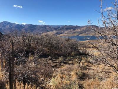 Wasatch County Residential Lots & Land For Sale: 10779 N Hideout Trl E
