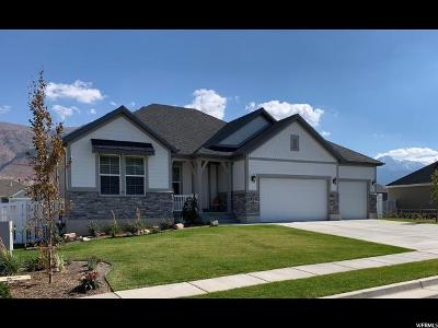 Weber County Single Family Home For Sale: 1732 N 100 E
