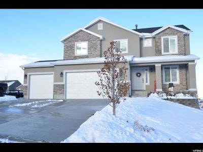 Santaquin Single Family Home For Sale: 579 S Sunset Dr W