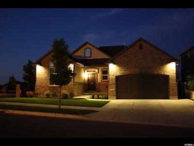 South Jordan Single Family Home For Sale: 10451 S Walnut Canyon Ln