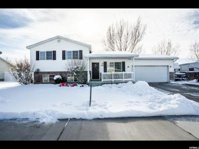 Lehi Single Family Home For Sale: 1501 W 300 S