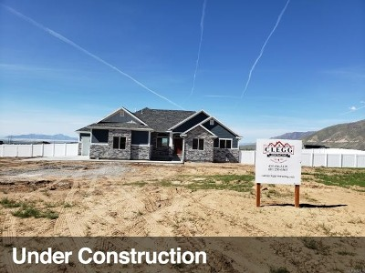 Tooele County Single Family Home For Sale: 1395 E Meadowbrook Dr #4