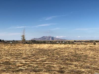 Tooele County Residential Lots & Land For Sale: 133 N Paige Ln