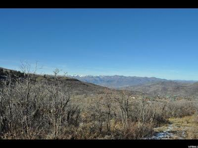 Wasatch County Residential Lots & Land For Sale: 2807 Timber Lakes Dr S